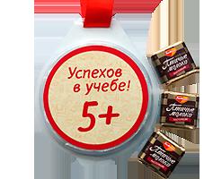 """Медаль с шоколадными конфетами на ленте. """"Успехов в учёбе!"""""""